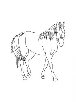 horses-coloring-pages-6