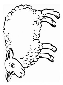 coloring-pages-animals-lamb-5