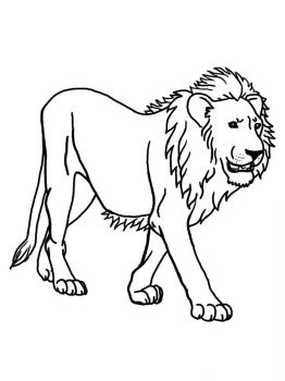 coloring-pages-animals-lion-7