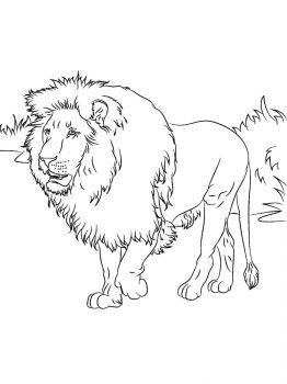 lion-coloring-pages-8