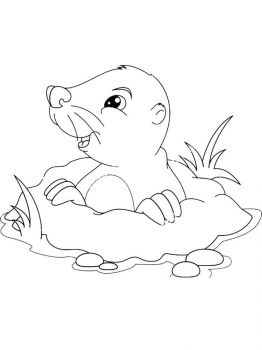 mole-coloring-pages-9
