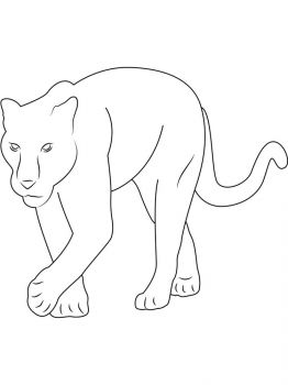 panther-coloring-pages-1