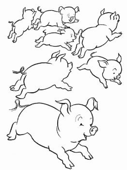 animals-pig-coloring-pages-16