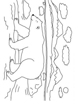 polar-bear-coloring-pages-13