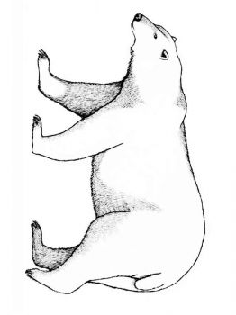 polar-bear-coloring-pages-3