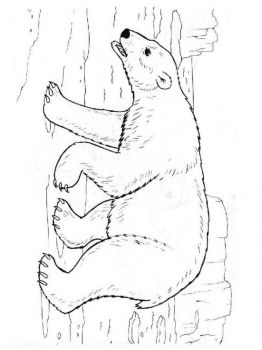 polar-bear-coloring-pages-4
