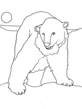 polar-bear-coloring-pages-7