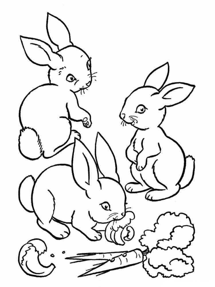 ausmalbilder kaninchen - malvorlagen kostenlos zum ausdrucken