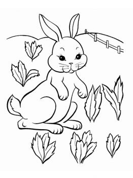coloring-pages-animals-rabbits-16