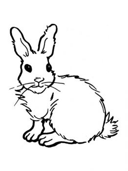 coloring-pages-animals-rabbits-8