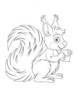 coloring-pages-animals-squirrel-13