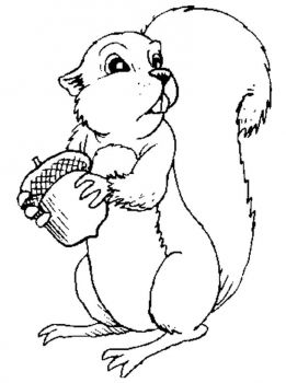 coloring-pages-animals-squirrel-6