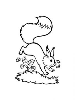 squirrel-coloring-pages-1