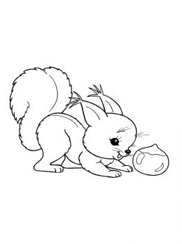 squirrel-coloring-pages-11