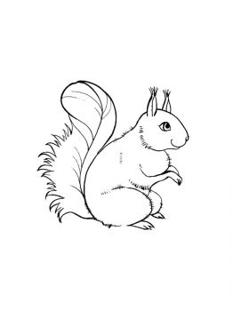 squirrel-coloring-pages-21