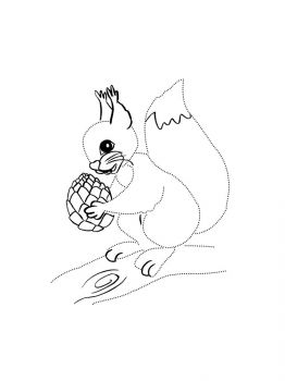 squirrel-coloring-pages-32
