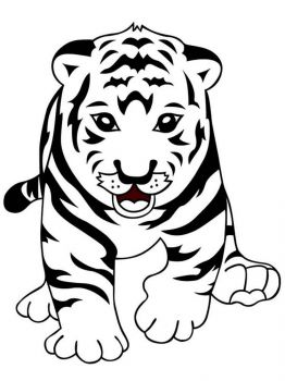 coloring-pages-animals-tiger-6