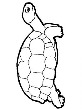 coloring-pages-animals-turtles-18