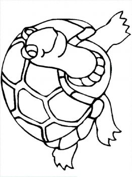 coloring-pages-animals-turtles-7