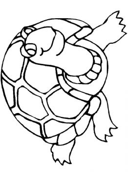 coloring-pages-animals-turtles-9
