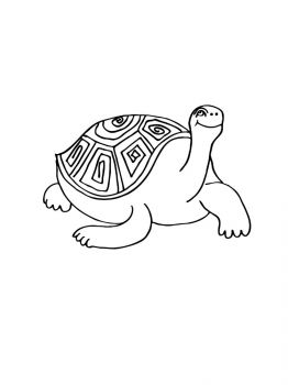 turtle-coloring-pages-10