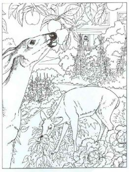 wild-animal-coloring-pages-17