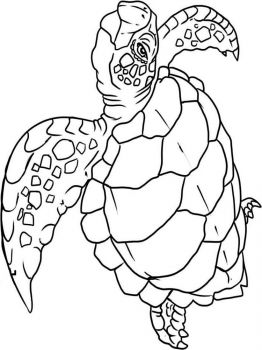 wild-animal-coloring-pages-18