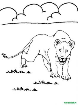 wild-animal-coloring-pages-27