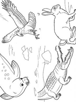 wild-animal-coloring-pages-31