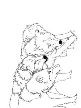 coloring-pages-animals-wolf-8