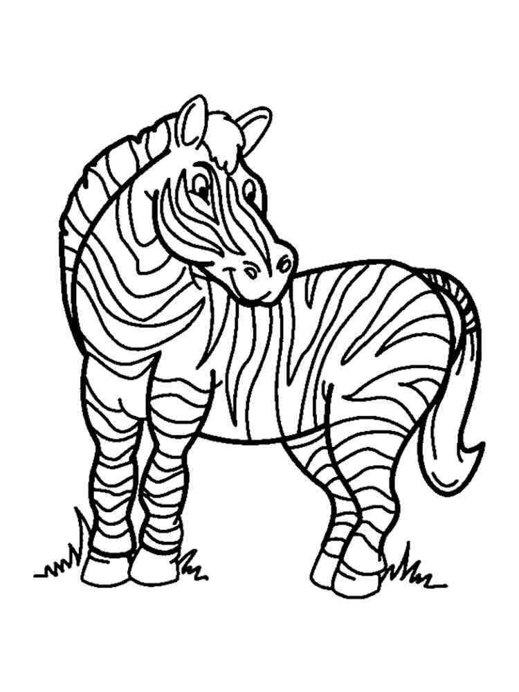 ausmalbilder zebras  malvorlagen kostenlos zum ausdrucken