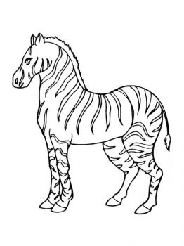 coloring-pages-animals-zebra-13