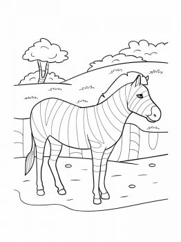 zebra-coloring-pages-11