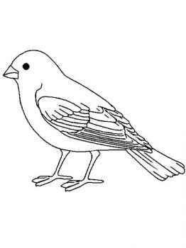 Canary-birds-coloring-pages-1