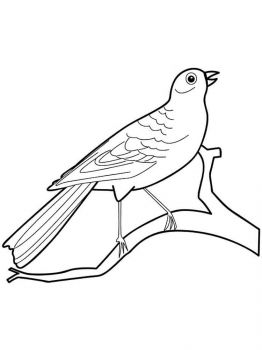 Canary-birds-coloring-pages-10