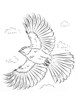 Chickadee-birds-coloring-pages-10