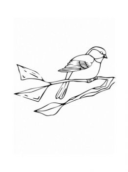 Chickadee-birds-coloring-pages-9