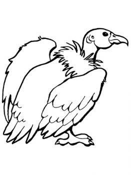 Condors-birds-coloring-pages-4