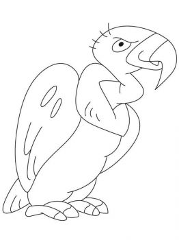 Condors-birds-coloring-pages-5