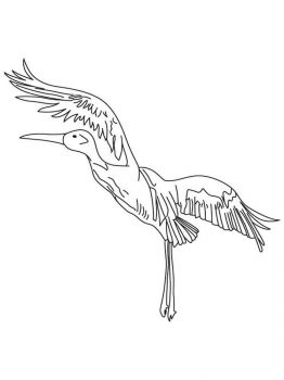Cranes-birds-coloring-pages-12