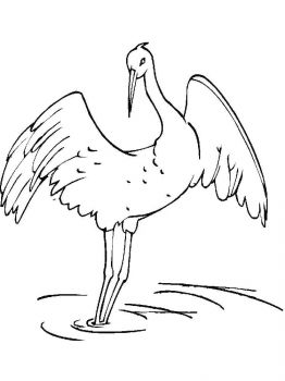Cranes-birds-coloring-pages-15