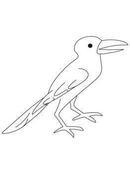 Crows-birds-coloring-pages-6