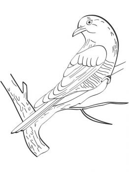 Cuckoos-birds-coloring-pages-7