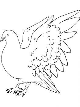 Doves-birds-coloring-pages-15