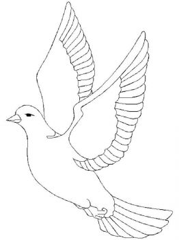 Doves-birds-coloring-pages-2
