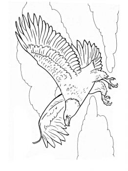 Eagle-birds-coloring-pages-12