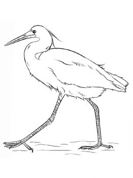 Egrets-birds-coloring-pages-12