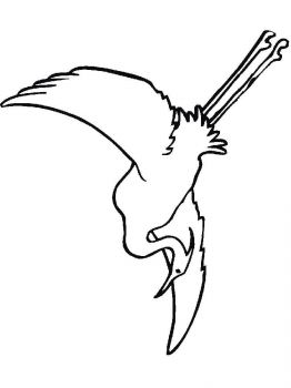 Egrets-birds-coloring-pages-13