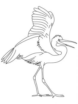 Egrets-birds-coloring-pages-8