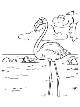 Flamingos-birds-coloring-pages-12